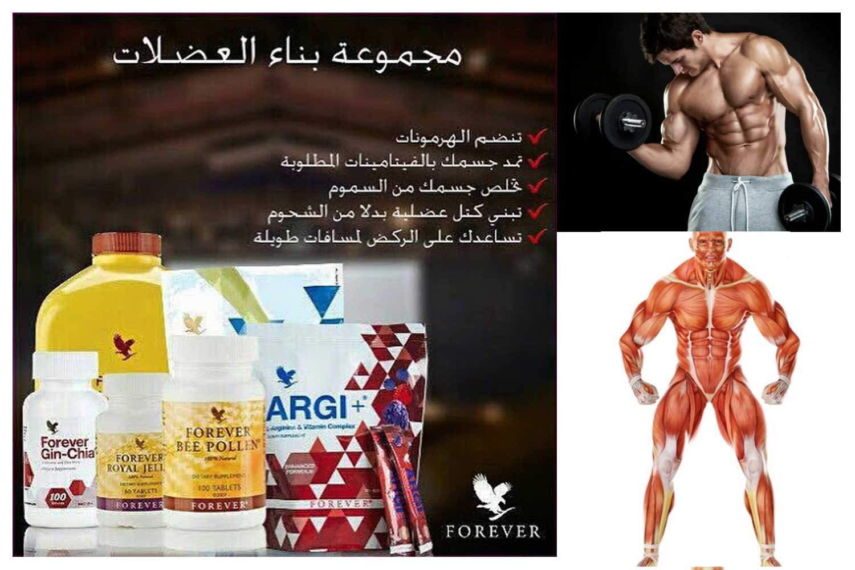 مجموعة بناء العضلات من فوريفر